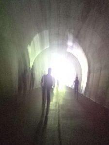 トンネル、ヒカゲ、タスカル